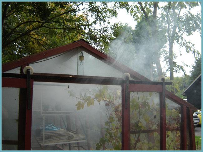 чем обработать теплицу от гусениц осенью