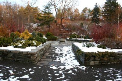 Посадочный календарь на февраль 2019 года садовода и огородника