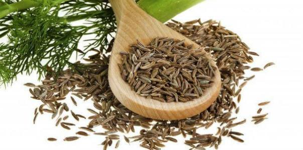 semena petrushki