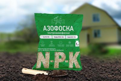 Применение удобрения Азофоска для картофеля