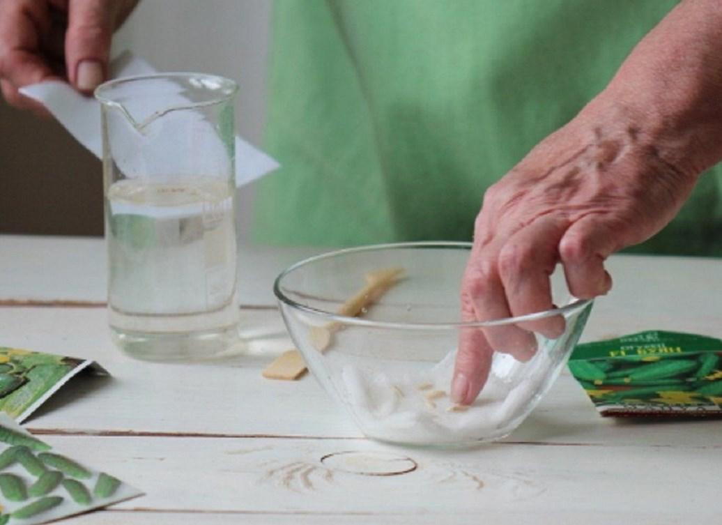 подкормка рассады янтарной кислотой дозировка