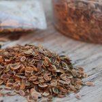 Срок хранения семян укропа