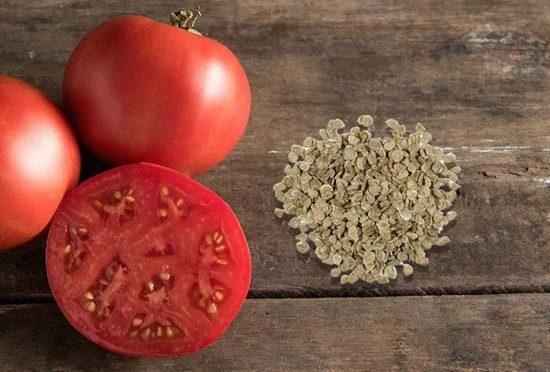 как правильно собрать и сохранить семена
