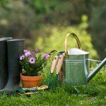 Лунный календарь на май садовода и огородника