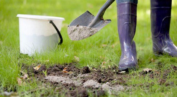 Какие удобрения нужны весной для огорода
