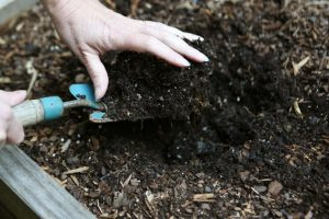весенняя подготовка грунта в теплице