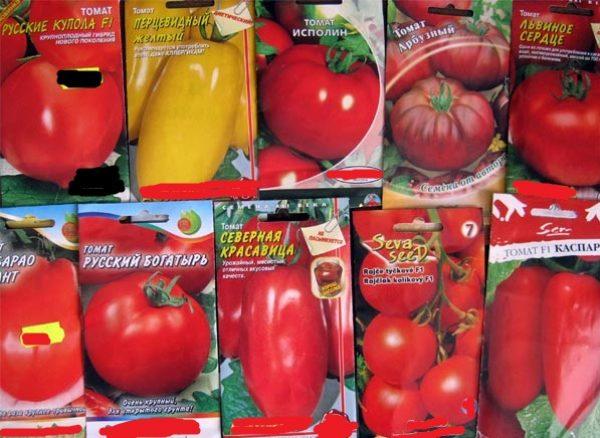 Русской по самые помидоры, порно видео онлайн пустили по кругу жестко
